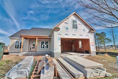 Myrtle Beach Single Family Home For Sale: 5219 Mt Pleasant Drive