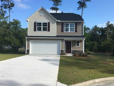 Loris Single Family Home For Sale: 669 Timber Creek Drive