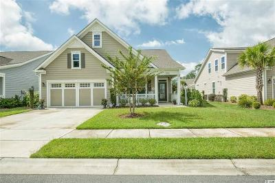 Myrtle Beach Single Family Home For Sale: 2172 Birchwood Circle