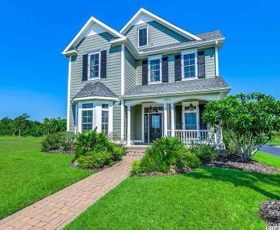 29579 Single Family Home For Sale: 392 St. Julian Lane