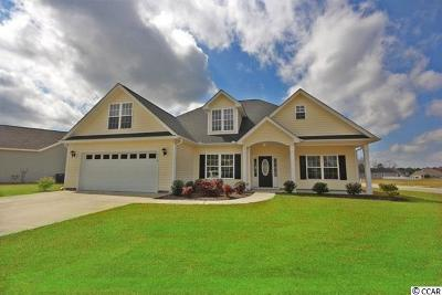 Pawleys Island Single Family Home For Sale: 33 Hagley Retreat Dr