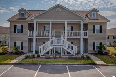 Murrells Inlet Condo/Townhouse For Sale: 237 Moonglow Circle #201