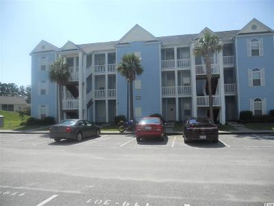 29579 Condo/Townhouse For Sale: 120 Fountain Point Ln #202