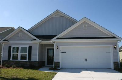 29579 Single Family Home For Sale: 1678 Palmetto Palm Dr