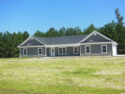 Conway Single Family Home Active-Pend. Cntgt. On Financi: 194 Cat Tail Bay Drive