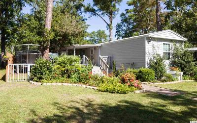 Myrtle Beach Single Family Home For Sale: 2713 Leo Drive
