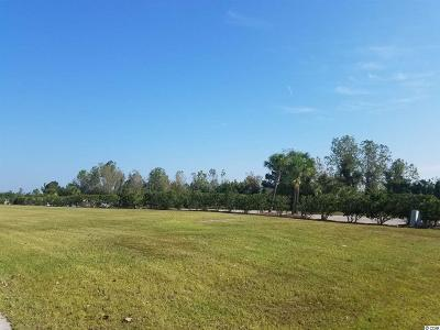 Myrtle Beach Residential Lots & Land For Sale: 921 Waterton Avenue