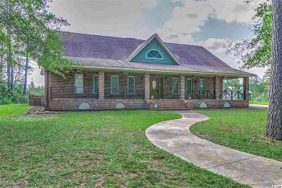 Conway Single Family Home For Sale: 250 Cain Wilson Road