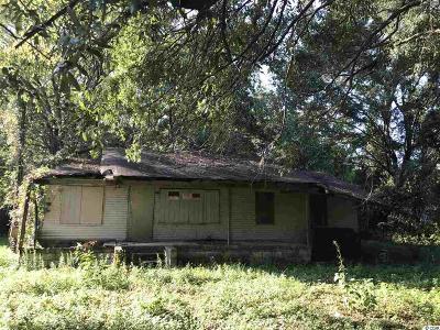 Georgetown Single Family Home For Sale: 405 Dekalb Street