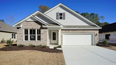 North Myrtle Beach Single Family Home For Sale: 1121 Marsh Inlet Drive
