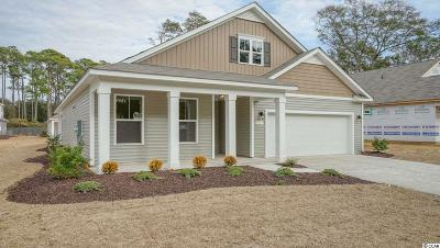 North Myrtle Beach Single Family Home For Sale: 1113 Inlet View Drive