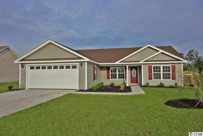 Georgetown Single Family Home For Sale: 59 Rolling Oak Drive