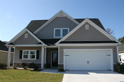Myrtle Beach Single Family Home For Sale: 1640 Palmetto Palm Dr.