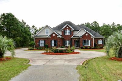 Myrtle Beach Single Family Home For Sale: 9449 Freewood Rd
