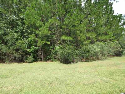 Georgetown County, Horry County Residential Lots & Land For Sale: 10 Stonington Drive