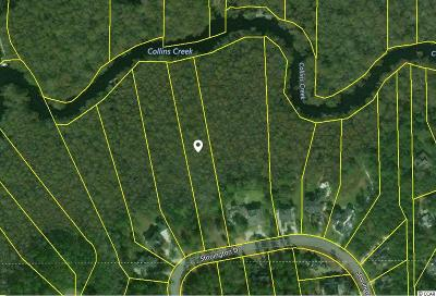 Georgetown County, Horry County Residential Lots & Land For Sale: Lot 42 Stonington Dr.