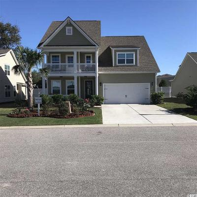 29575 Single Family Home For Sale: 261 Coral Beach Circle