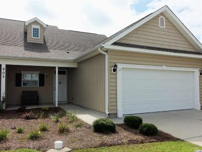 Georgetown County, Horry County Condo/Townhouse For Sale: 807 Sail Lane #102