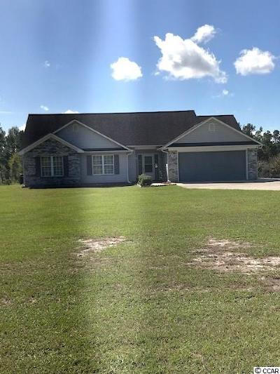 Horry County Single Family Home For Sale: 969 Brunson Spring Rd