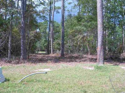 Georgetown County, Horry County Residential Lots & Land For Sale: 102 Creek Harbour Circle