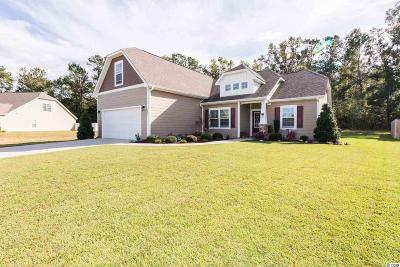 Conway Single Family Home For Sale: 181 Barons Bluff Drive