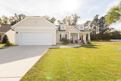 Conway Single Family Home For Sale: 185 Barons Bluff Drive