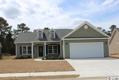 Conway Single Family Home Active-Pend. Cntgt. On Financi: 125 Barons Bluff Drive
