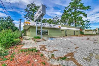 Horry County Commercial For Sale: 907 Church St. #1003 Chu