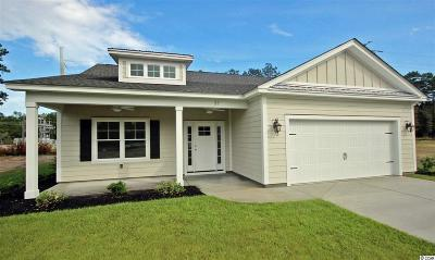 Pawleys Island Single Family Home For Sale: 57 Hagley Retreat Dr