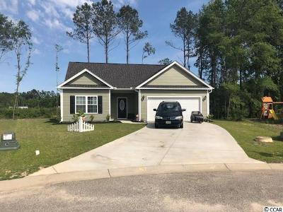 Loris Single Family Home Active-Pend. Cntgt. On Financi: 704 Silver Slipper Ct