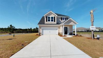 Myrtle Beach Single Family Home For Sale: 1718 Palmetto Palm Dr.