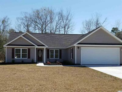 Georgetown Single Family Home Active-Pend. Cntgt. On Financi: Tbd Rivercrest Place