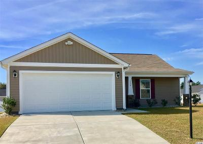 Conway Single Family Home For Sale: 1336 Boker Rd