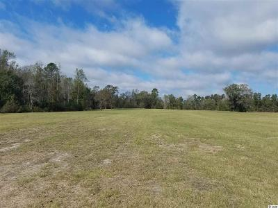 Horry County Residential Lots & Land For Sale: Tbd Busy Corner Road