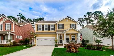 Murrells Inlet Single Family Home Active-Pend. Cntgt. On Financi: 251 Simplicity Drive