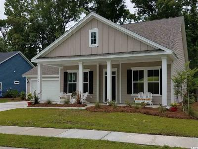 Myrtle Beach Single Family Home For Sale: 1740 Edgewood Drive