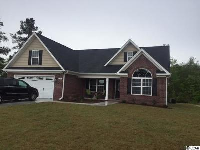 Aynor SC Single Family Home For Sale: $244,900