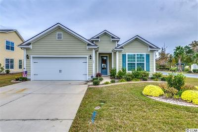 29575 Single Family Home For Sale: 307 Coral Beach Circle