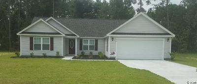 Georgetown Single Family Home Active-Pend. Cntgt. On Financi: 10 Timber Run Drive
