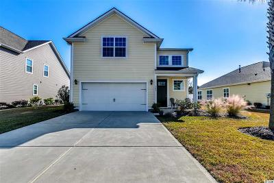 29575 Single Family Home For Sale: 303 Coral Beach Circle