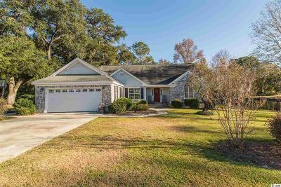 Georgetown Single Family Home For Sale: 125 Wraggs Ferry Road