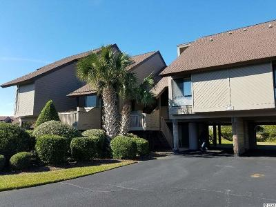 Pawleys Island Condo/Townhouse For Sale: 30 Spartina Circle #7