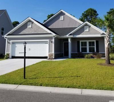 29579 Single Family Home For Sale: 1636 Palmetto Palm Drive