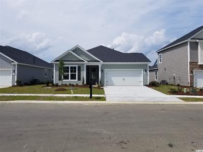 Myrtle Beach Single Family Home Active-Pend. Cntgt. On Financi: 1604 Parish Way