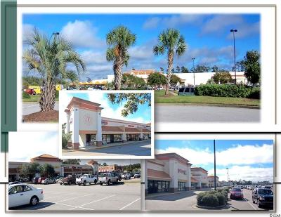 North Myrtle Beach Single Family Home For Sale: 550 N Highway 17 Business #Unit 27