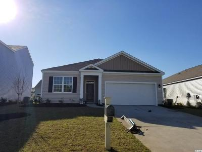 Myrtle Beach Single Family Home For Sale: 154 Mountain Ash Lane