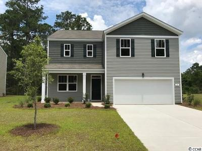 Pawleys Island Single Family Home For Sale: 63 Parkglen Drive