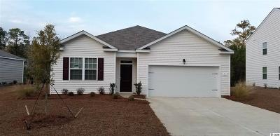 Pawleys Island Single Family Home For Sale: 91 Parkglen Drive