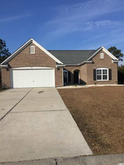 Georgetown County, Horry County Single Family Home For Sale: 22 Riverbend Dr