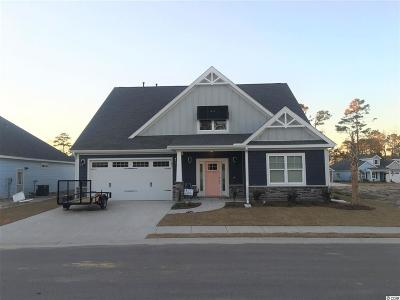 North Myrtle Beach Single Family Home For Sale: 1123 Doubloon Drive